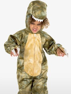 Costume T-Rex - Enfant Fancy Dress