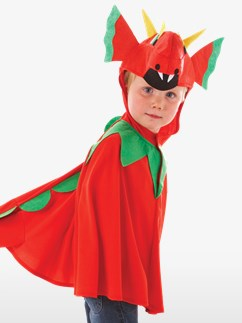 Gentil Dragon – Déguisement Enfant  Fancy Dress